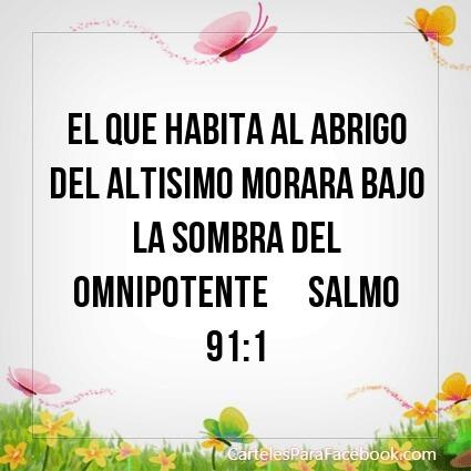 salmo 91 1 al abrigo del altísimo
