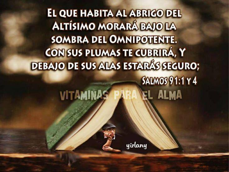 salmo 91 1 el que habita al abrigo del altísimo