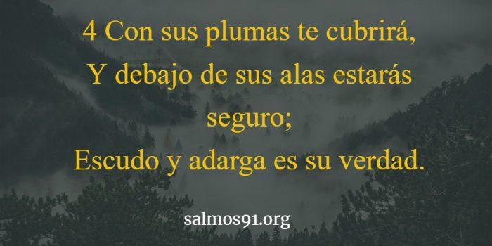 salmo 91 4 imagen