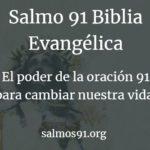 biblia evangélica