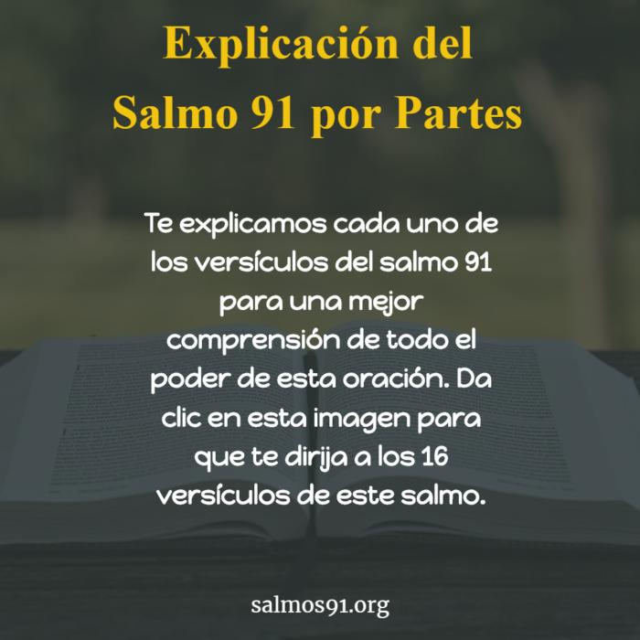 Explicación del Salmo por partes